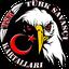 Türk Savaşçı Kartalları
